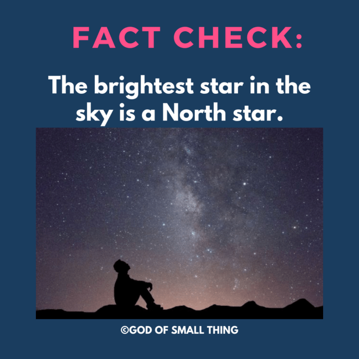 Fact Check: The brightest star in the sky is a North star.