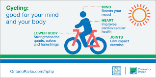 Ftiness Trend Benefits of cycling
