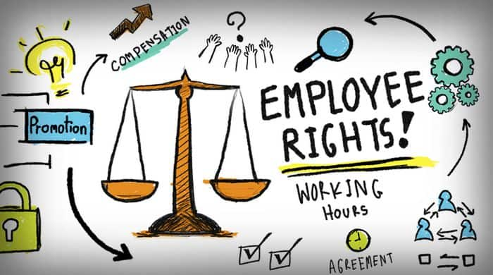 Countries with best labor laws: Netherlands. best country for it jobs, working conditions around the world, best country for job opportunities,best country to live and work