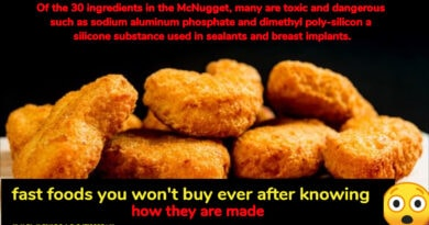 Fast Food Facts: 10 fast foods you won't buy ever after knowing how they are made - God of Small Thing