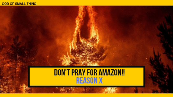 Complete Story of Amazon rainforest fire: When, why and how Amazon Rain Forest catched fire
