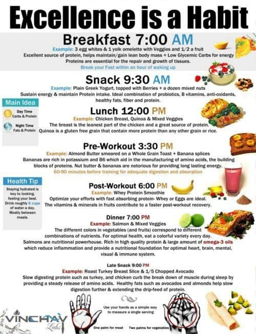 Gym diet for beginners