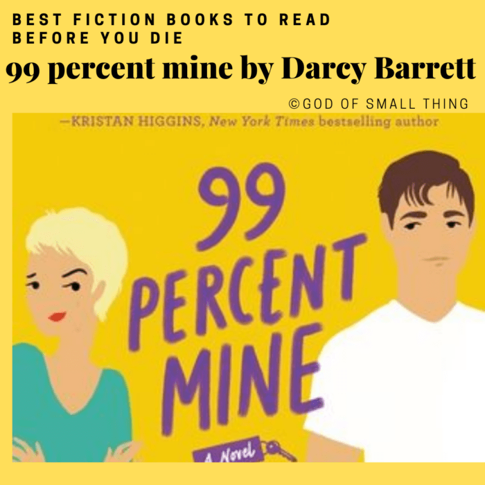 best fiction books: 99 percent mine by Darcy Barrett