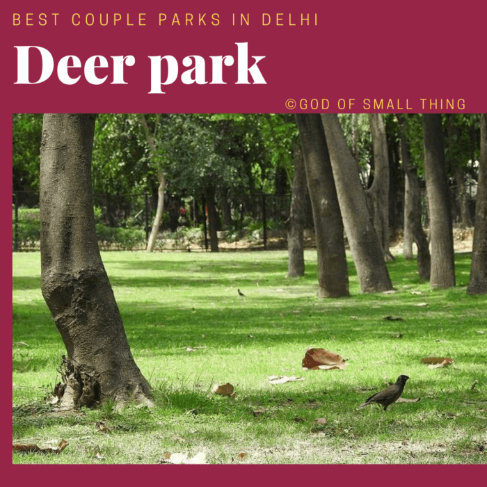Best couple park in Delhi: Deer Park Hauz Khas