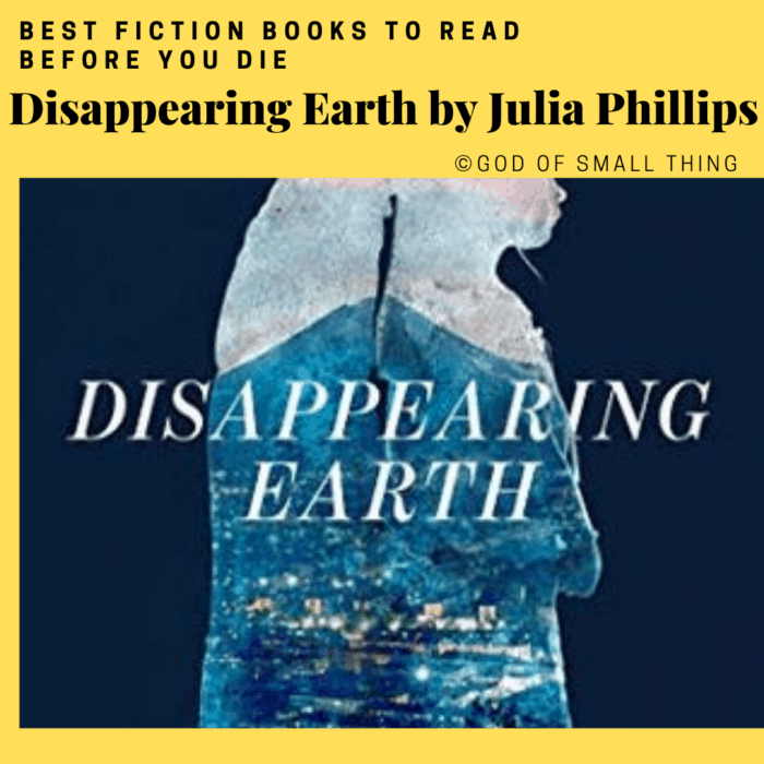 best fiction books: Disappearing Earth by Julia Phillips