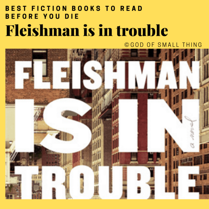 best fiction books: Fleishman is in trouble by Taffy Brodesser-Akner