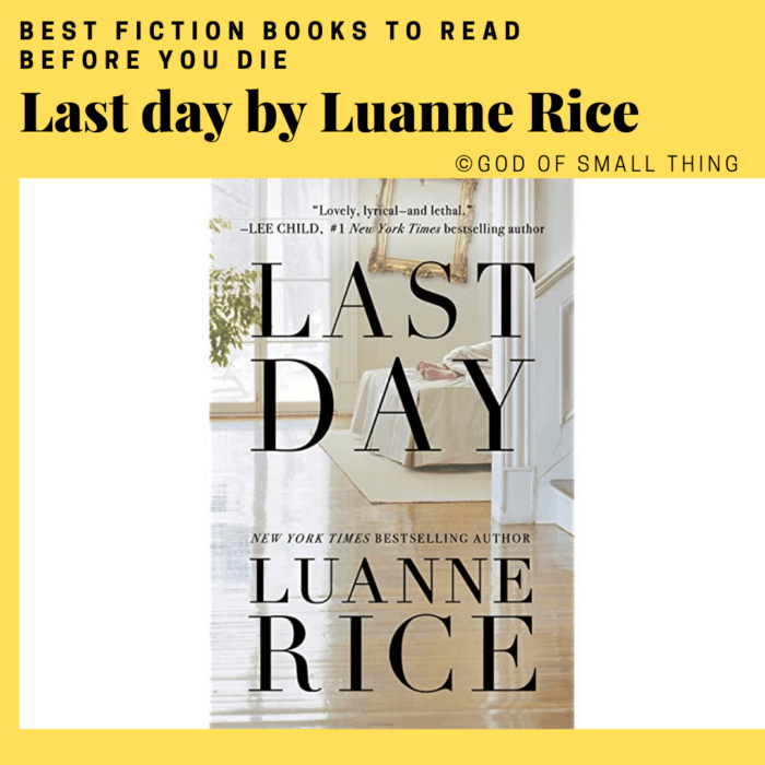 best fiction books: Last day by Luanne Rice