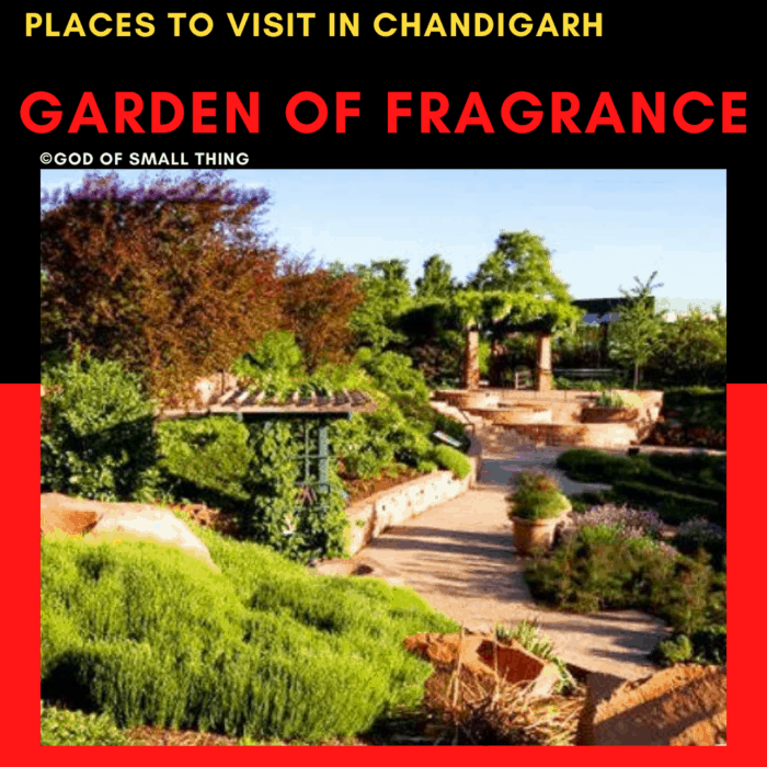 Garden of fragrance: Places to Visit in Chandigarh Garden of fragrance