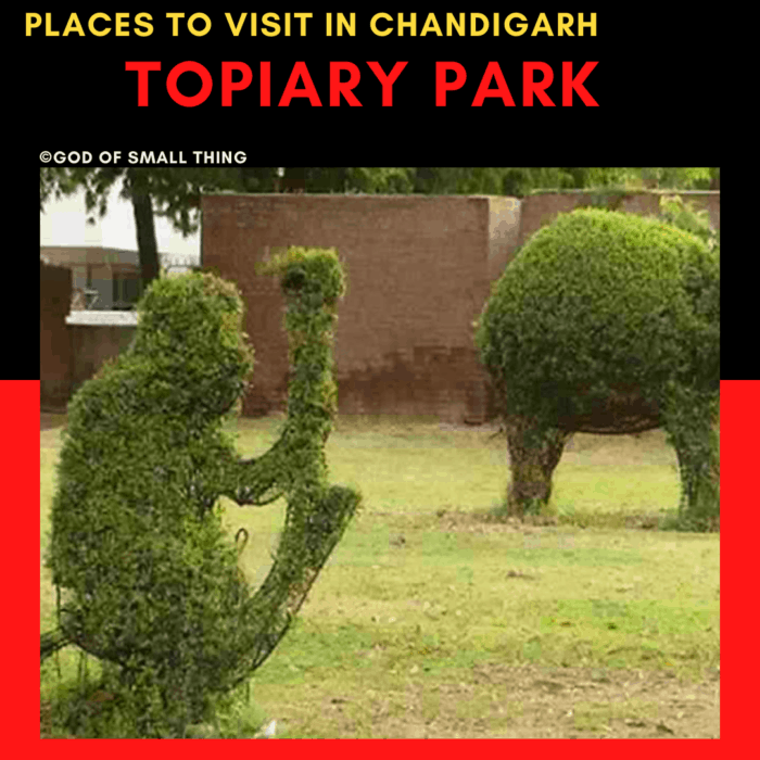 Topiary park: Places to Visit in Chandigarh