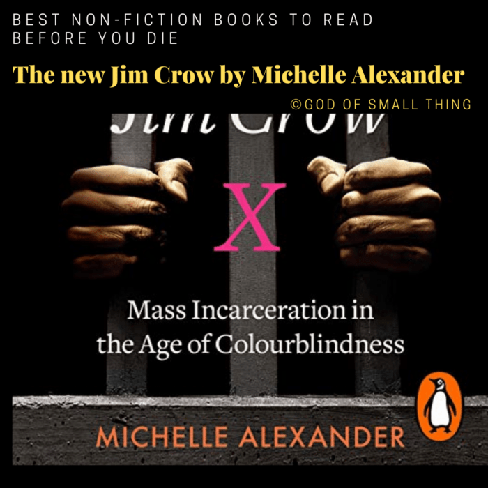best non-fiction books: The new Jim Crow by Michelle Alexander