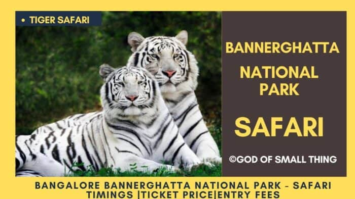 Bannerghatta National Park Tiger safari