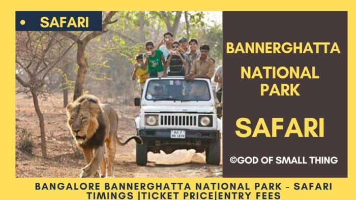 Bannerghatta National Park safari