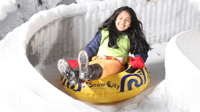 Top attractions at Snow City Begngaluru