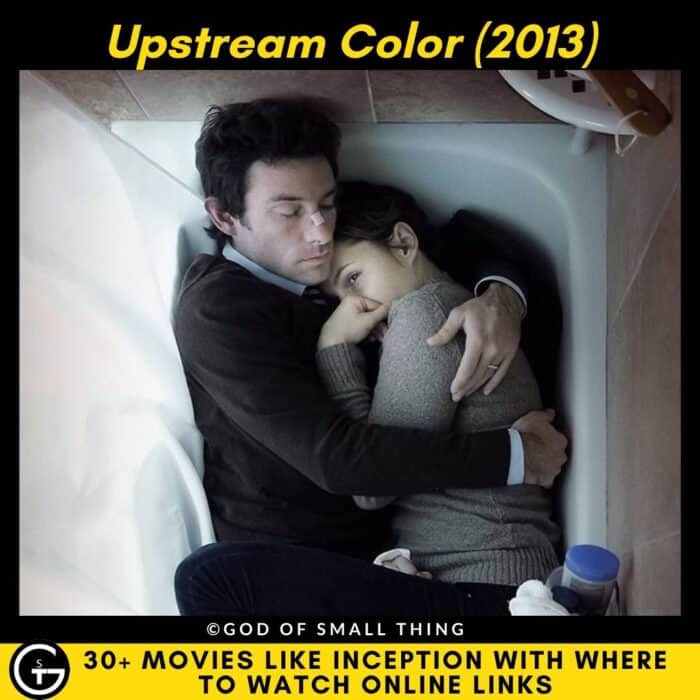 Movies Like Inception Upstream Color (2013)