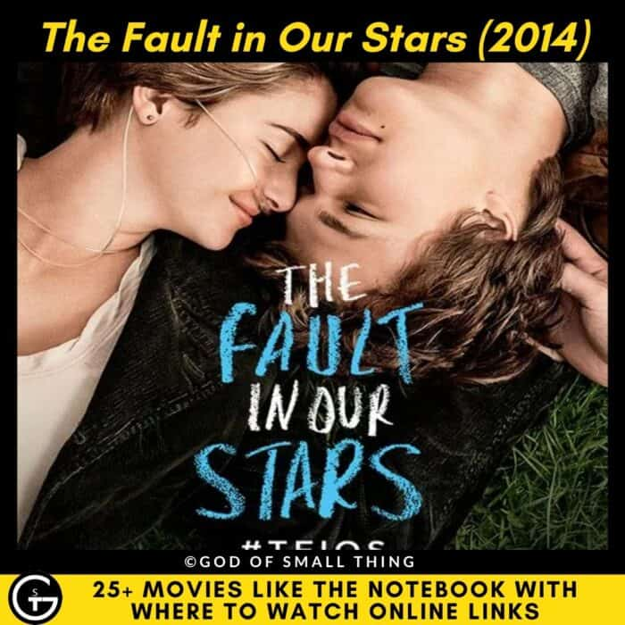 Movies Like The Notebook The Fault in Our Stars