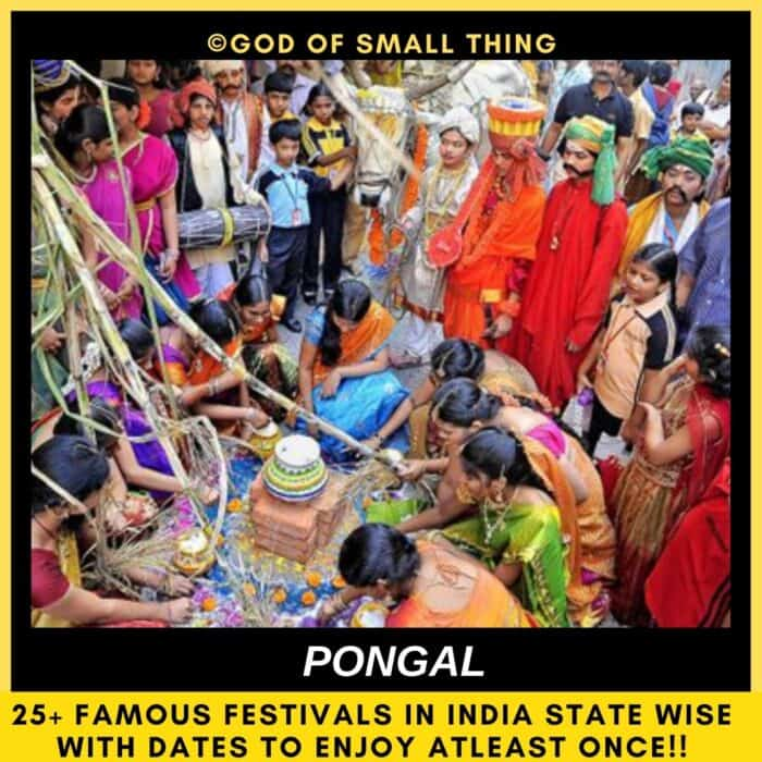 Indian festivals Pongal India