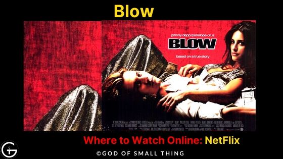 Movies like the wolf of wall street on netflix: Blow Movie Online