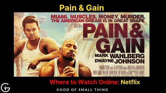 Movies similar to wolf of wall street: Pain & Gain Movie Online