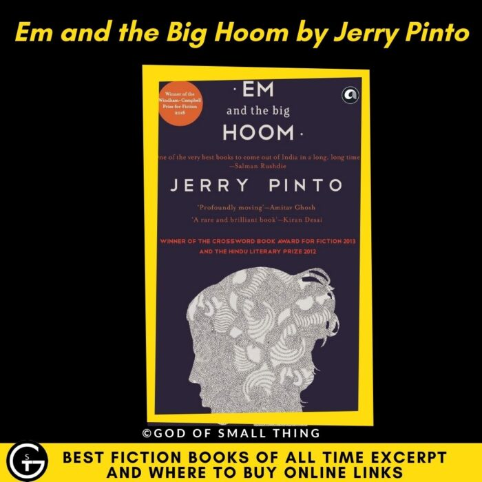 Best fiction books of all Time: Em and the Big Hoom by Jerry Pinto