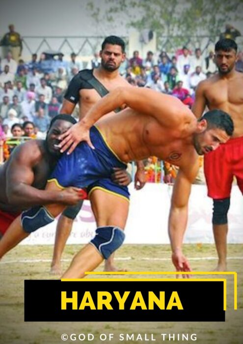 Which state is best in kabaddi Haryana