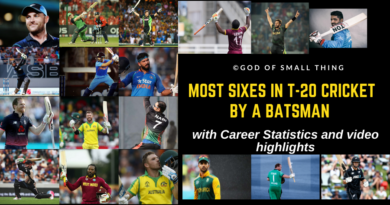 Most sixes in T20 cricket (1)