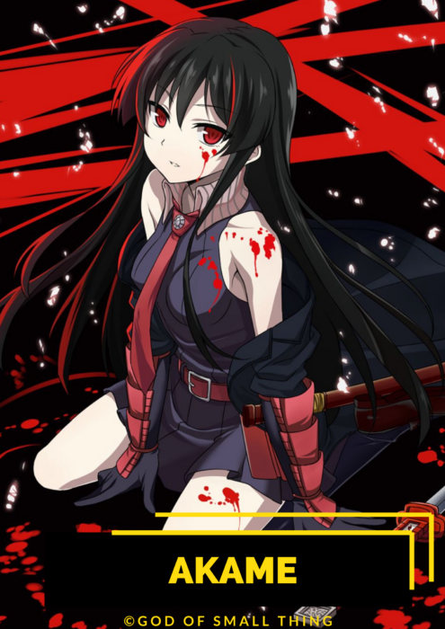 Akame best anime characters