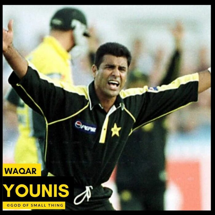 Best Cricket Bowlers Waqar Younis
