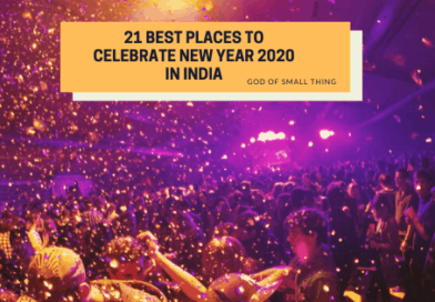 21 Best Places To Celebrate New Year 2020 in India