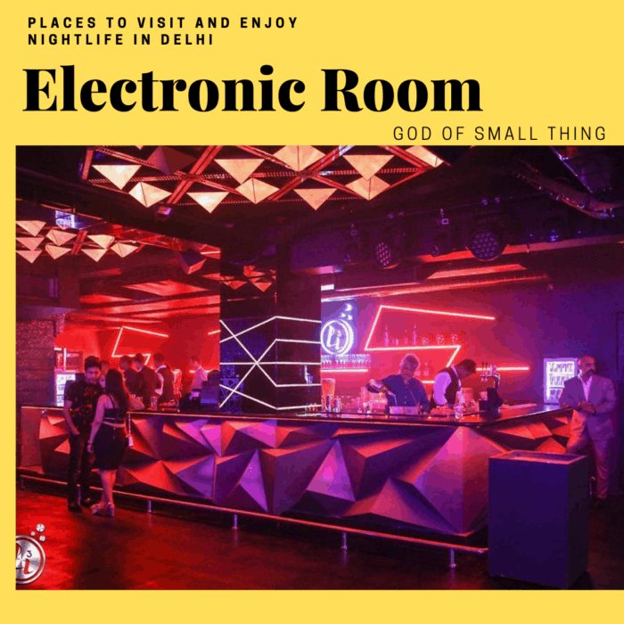 nightclubs in delhi - The Electronic Room