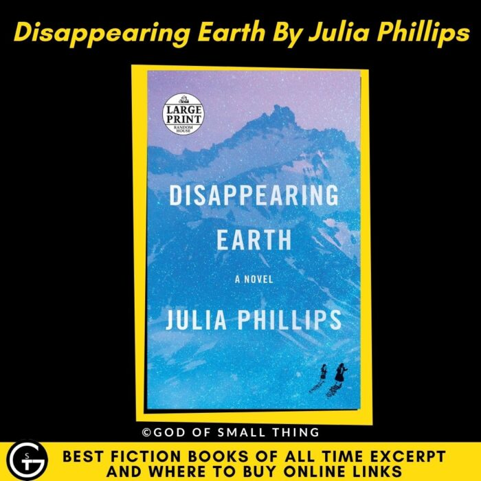 Best fiction book Disappearing Earth